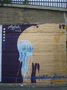Jellyfish 3 x 3,3 Meter