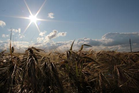 Sommersonnenwende Foto F.Erichsen