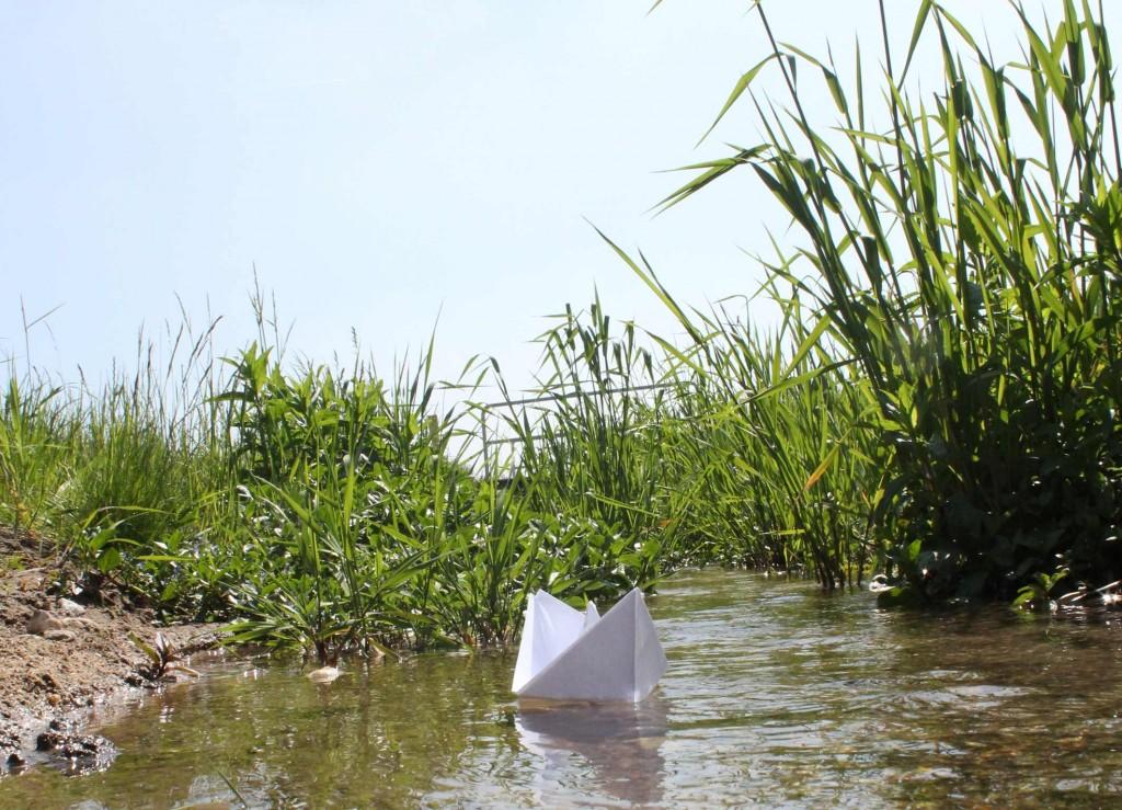 papierschiff-foto-ferichse